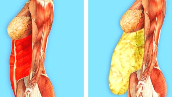 obesity toxins foods